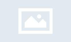 neu-dang-hoang-loan-vi-mo-thay-ran-thi-ban-can-biet-nhung-dieu-nay